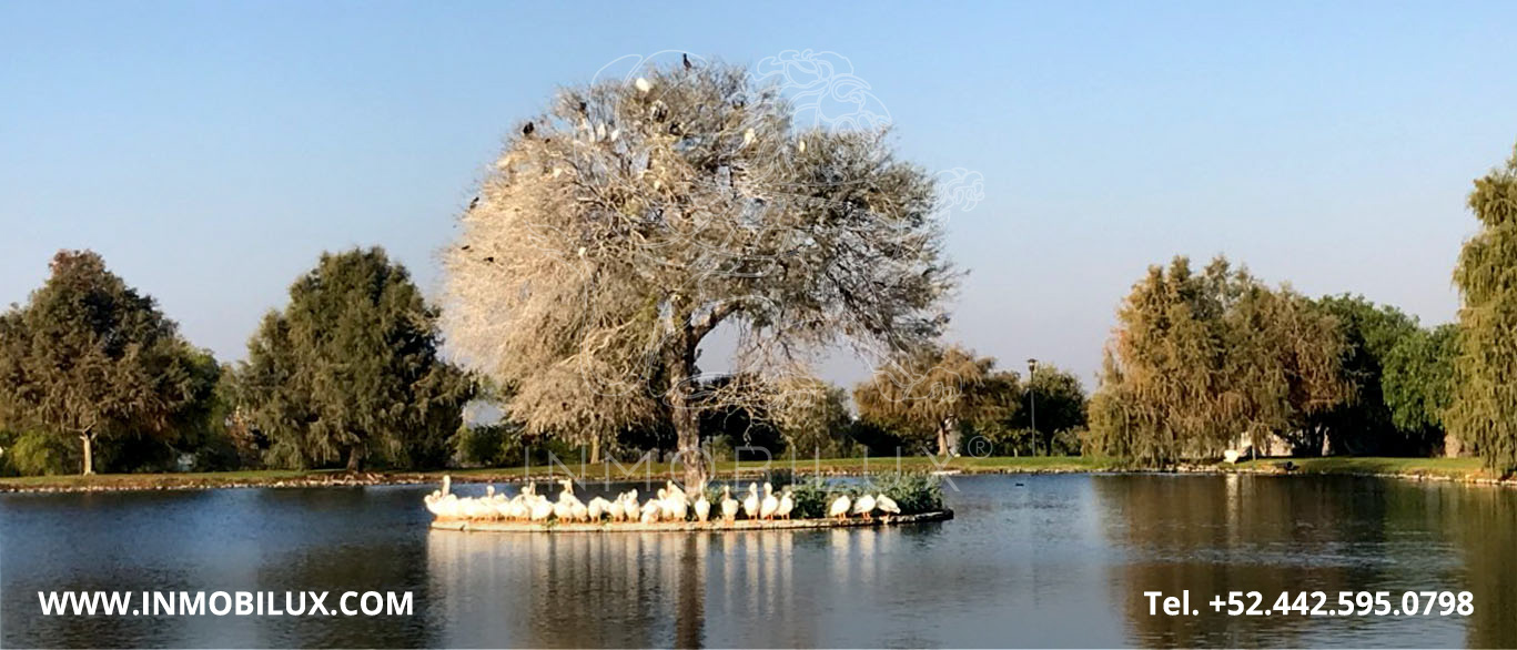 Lake Island El Campanario Queretaro Land Lot