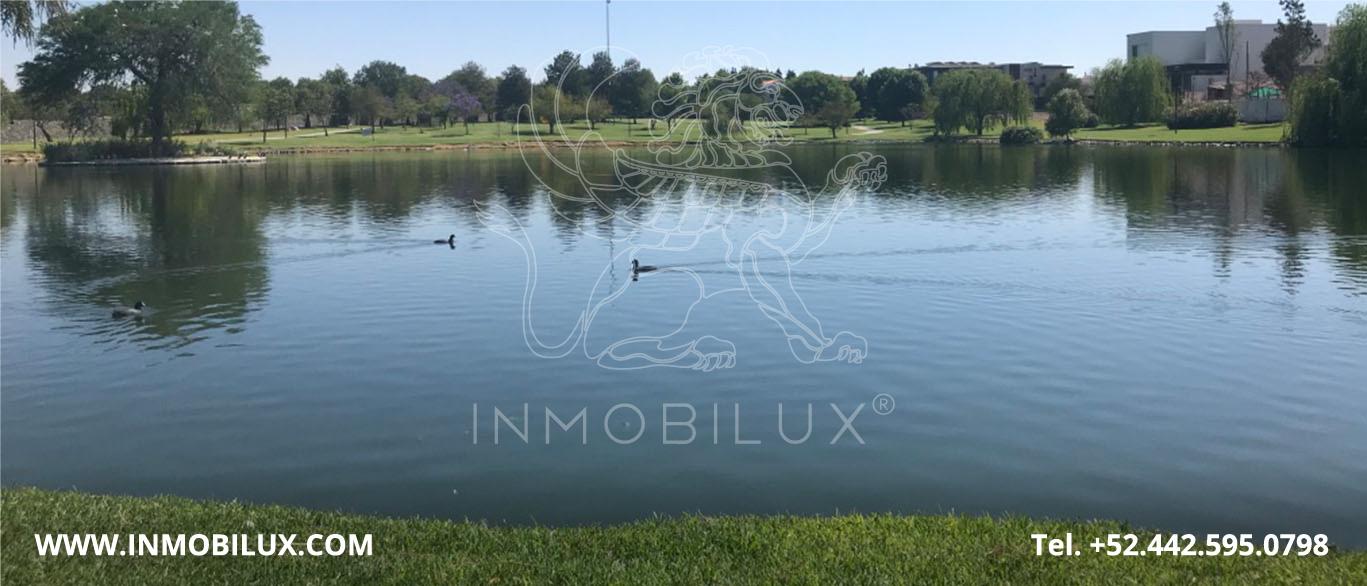 Ducks in Lake El Campanario Queretaro Land Lot